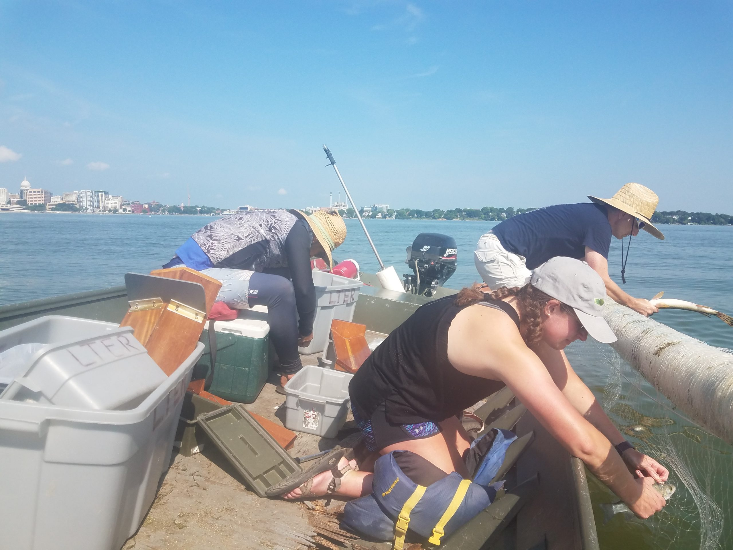Ted Bier, Mary Solokas, and Scott Westler haul in a gill net on Lake Mendota. Photo: Alice Ogden-Nussbaum